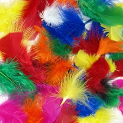 Picture of Short Marabou & Quill Feathers