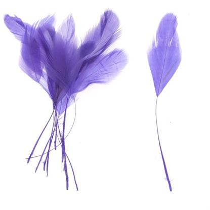 Picture of Teardrop Coque feathers - Purple