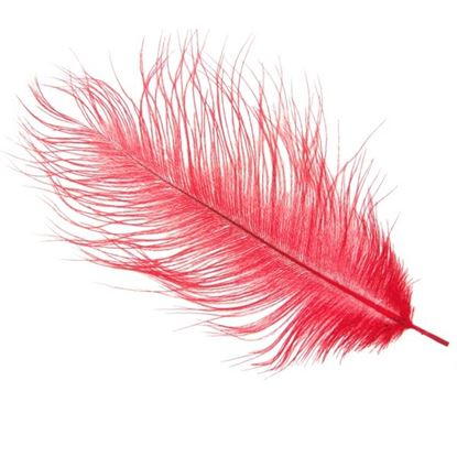 Picture of Byock Ostrich Feathers - Red