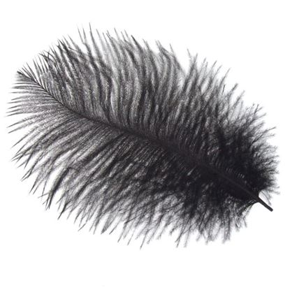 Picture of Byock Ostrich Feathers - Black