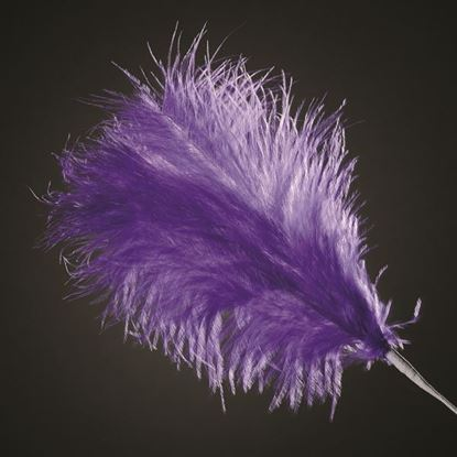 Picture of 3 Feather Spray - Purple