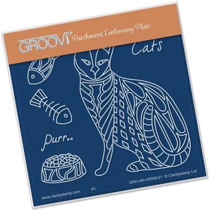 Feline Deights Groovi A6 Square - Pattern Cat Front