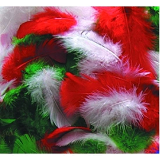 Picture of Christmas Assorted Feathers
