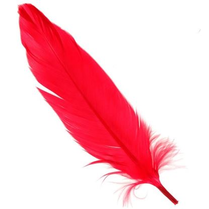 Picture of Quill Feathers - Red