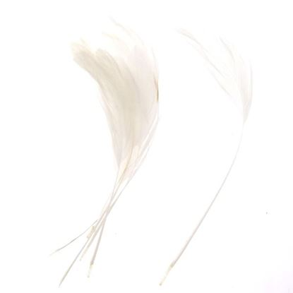 Picture of Teardrop Coque feathers - White