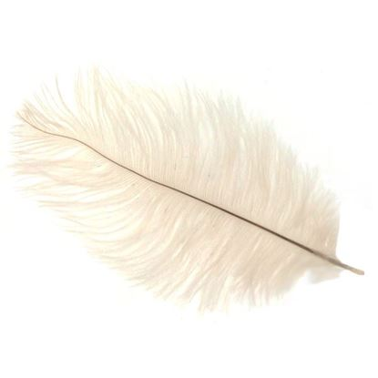 Picture of Byock Ostrich Feathers - White