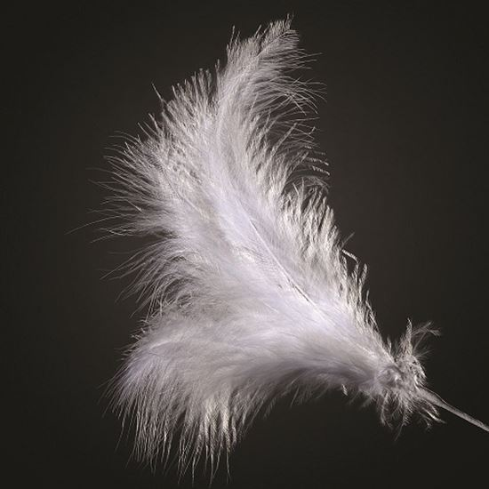Picture of 3 Feather Spray - White