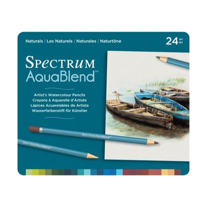 Picture of Spectrum Aquablend 24 Pencil Set Naturals