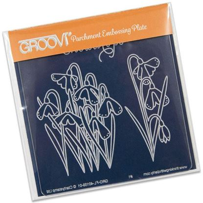 Picture of Groovi Baby Plate A6 Snowdrops