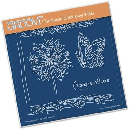 Picture of Agapanthus Name Groovi A5 Plate by Jayne Nestorenko
