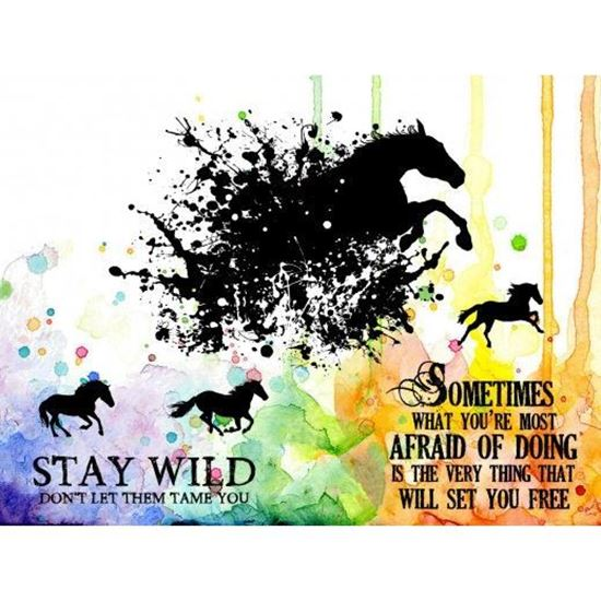Visible Image Stamp - Stay Wild