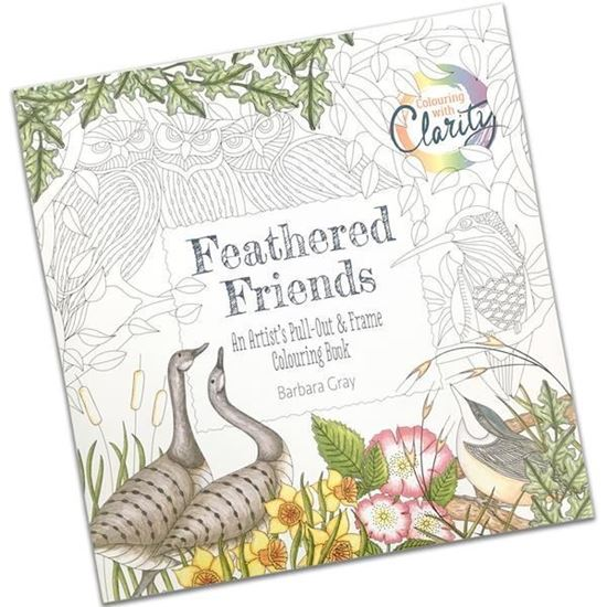 Feathered Friends Colouring Book
