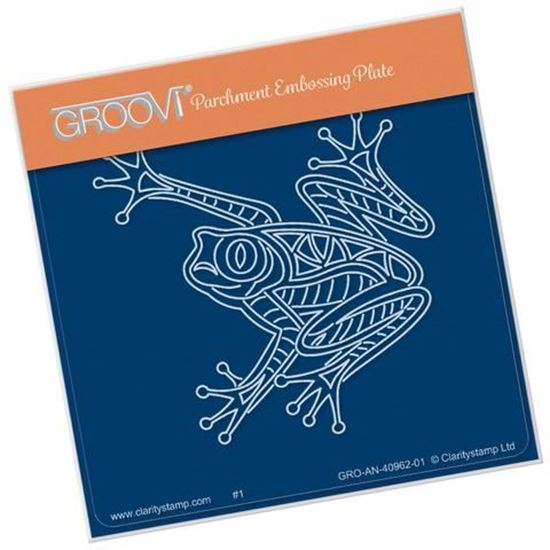 Frog Groovi Baby Plate A6