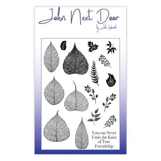 John Next Door Clear Stamp - Skeleton Leaves