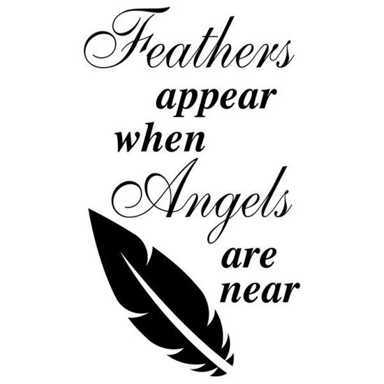 Feathers Appear when Angels are Near No3 Decal
