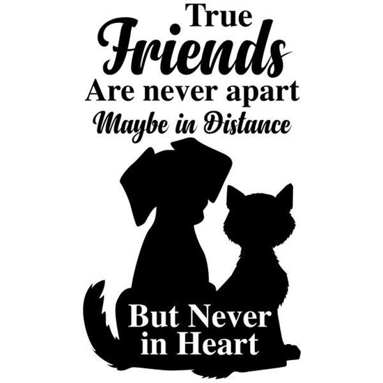 True Friends Decal