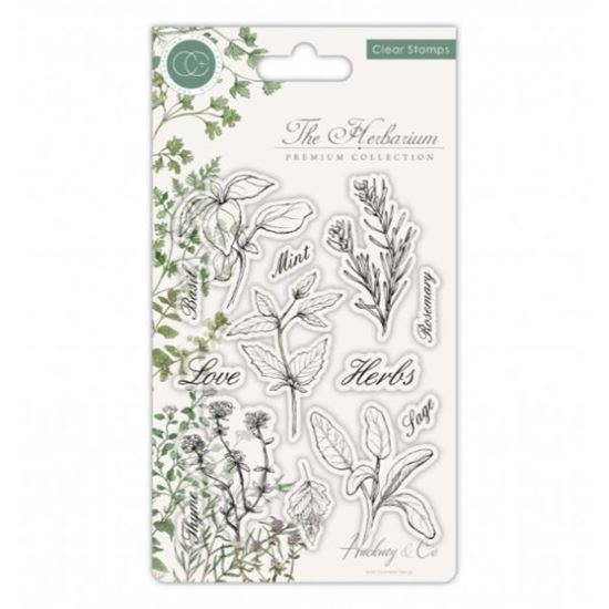 The Herbarium A6 Clear Stamp Set - Herbs