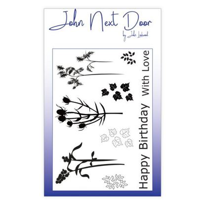 John Next Door Clear Stamp - Autumn Flowers 9
