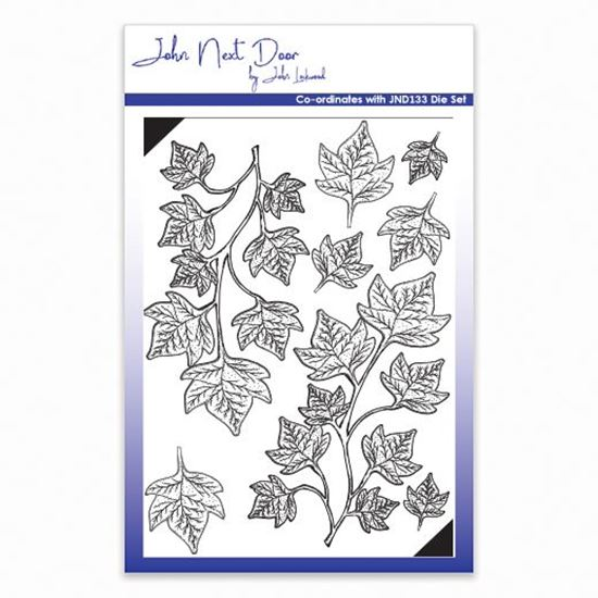 John Next Door Stamp Set - Shaded Ivy