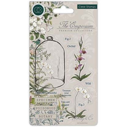The Emporium A6 Clear Stamp Set - Botany