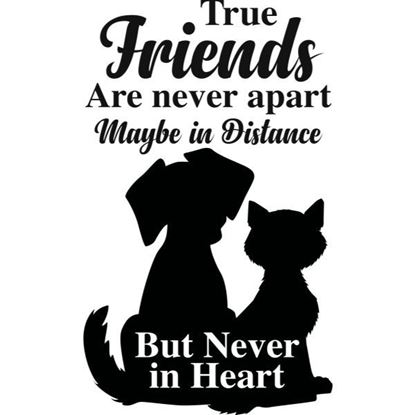 True Friends Cat & Dog s/a Vinyl