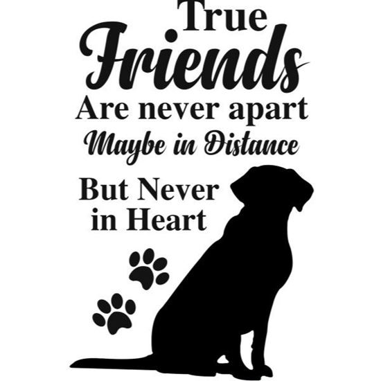True Friends Labrador s/a Vinyl