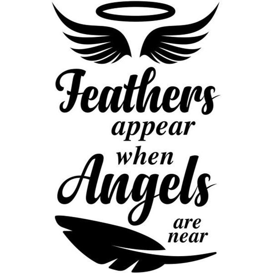 Feathers Appear 2 s/a Vinyl