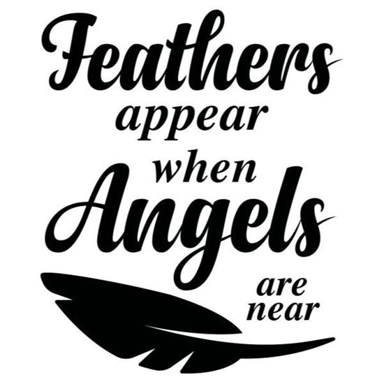 Feathers Appear  s/a Vinyl
