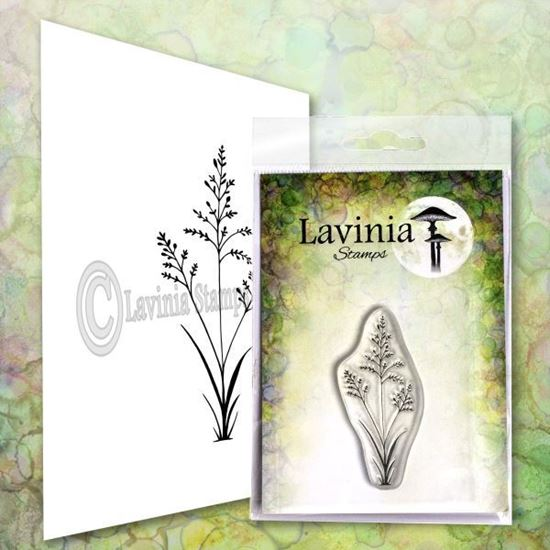 Lavinia Stamps  - Orchard Grass